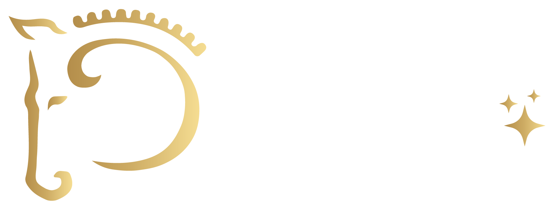 Dutch dressage stars